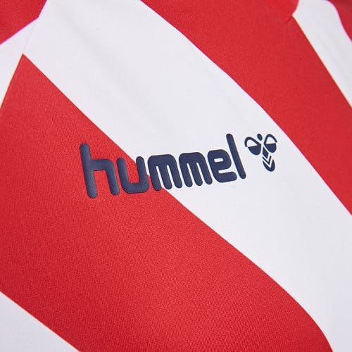 maillot-collector-danemark-2